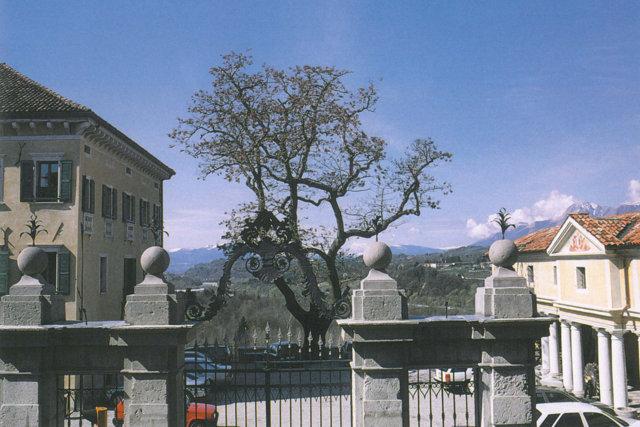 Palazzo Doglioni Dalmas Belluno